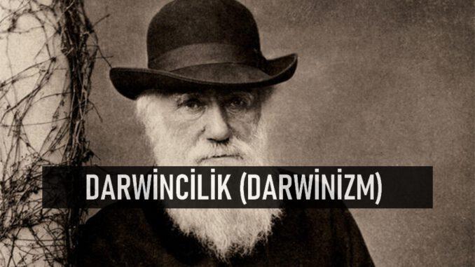 Darwincilik (Darwinizm)