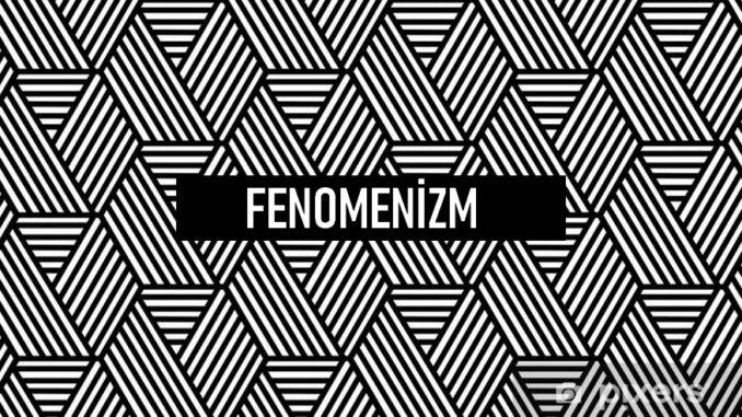 Fenomenizm Nedir?
