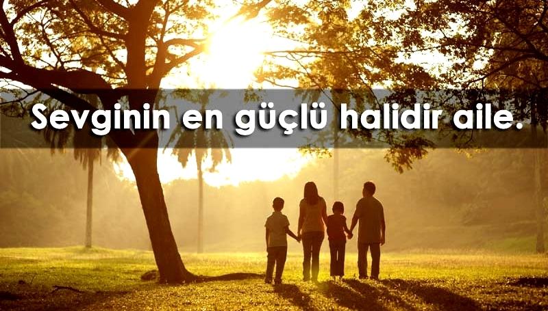 Aile Kurumunun Sevgi İşlevi