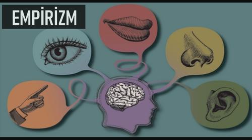 Duyu Organları, Beyni Besleyen Nehirlerdir