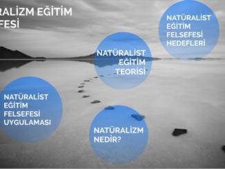 Eğitim Felsefesinde Natüralizm Nedir? 1