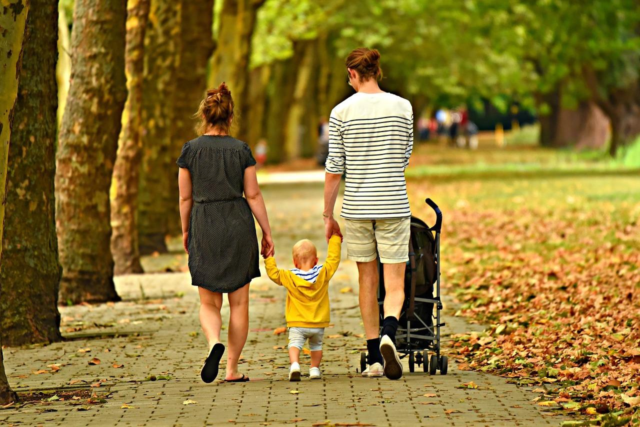 Aile, sürekliliğe göre gruplardan birisidir.