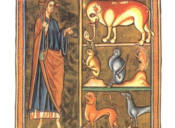 Ksenophanes'in Hayvan Teologları 1