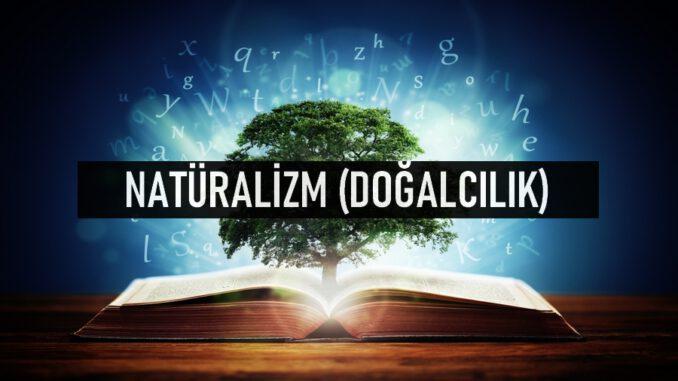 Natüralizm (Doğalcılık) Nedir?
