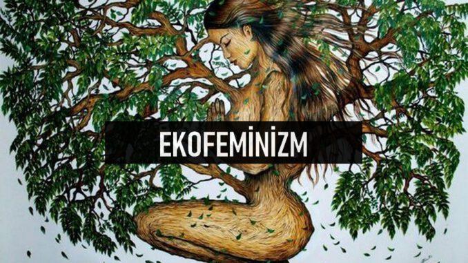 Ekofeminizm Nedir?